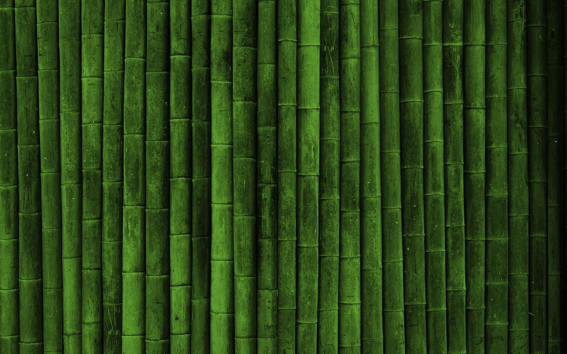 bamboo-wall-digital-art-hd-wallpaper-1920x1200-6370